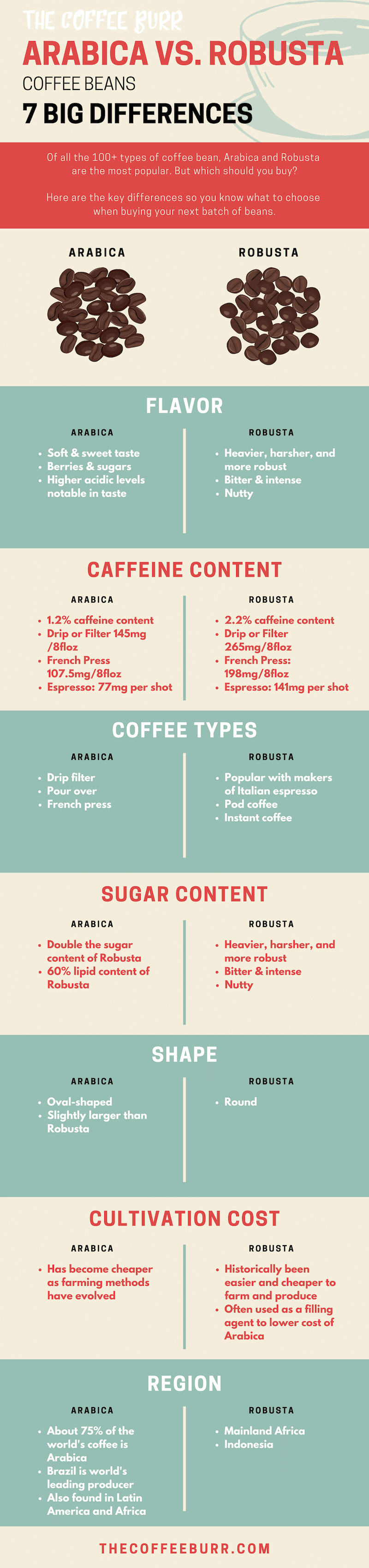 arabica vs robusta coffee beans infographic